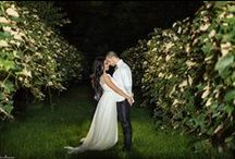EvaImage Photography / My Photography: Weddings, Engagements, Proposals, Portraits & More