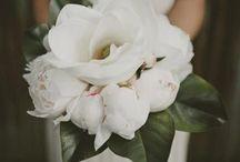 White !