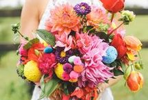 Rainbow Heaven / Multi coloured wedding inspiration. Bold brights, pale pastels.