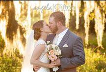 Wedding Photography / Wedding photography | Wedding photographer | Tampa wedding photographer | Beach wedding photography | Angela Clifton Photography / by Angela Clifton Photography