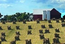 Raising the Amish Roof / Amish Architecture & Life on an Amish Farm