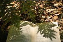 Patio's, Gardens and 'Green' Decor