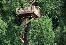 TreeHouse.x