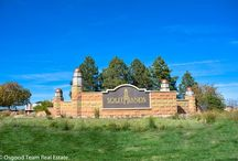 Colorado - Aurora / Welcome to beautiful Aurora, CO - We Love where we live! Enjoy this board of all the amazing things to explore in Aurora. Planning a move to the Denver area? We can help. 303.900.0428 or www.osgoodteam.com