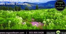 Best Realtors in Parker, Colorado! / Moving to the Denver area?  We've got you covered!  Located in beautiful downtown Parker, Colorado, our team of top real estate agents is knowledgeable about Parker and the South Metro Denver area. Helping Buyers Sellers and Investors. www.osgoodteam.com | 303.900.0428
