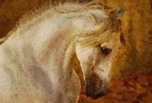 Oilpaintings - horses / Oilpainting from your photo , 100 % handmade.