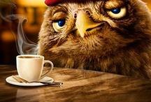 Coffee / by Shan Octavio