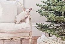 Christmas Recipes & Decor / Christmas cocktail recipes, gingerbread recipes, christmas cookie recipes, Christmas decorations, and christmas dinner recipes.