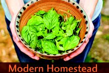 Tips For Homesteaders / Here are tips for homesteading and self suffiency. We have ideas here for freezing, canning, organizing you pantry, maple tapping, cooking from scratch, gardening, farming, raising healthy animals and more.