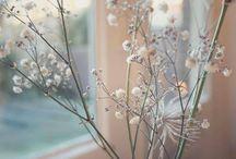 {mes petites paillettes / My blog} / Photos des articles du blog www.mespetitespaillettes.com By Virginie Akrich