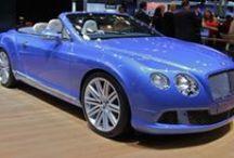 Bentley / by Allan Dynes