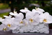Blumen und Tischdekoration