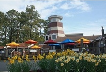 Places to Eat on Chincoteague