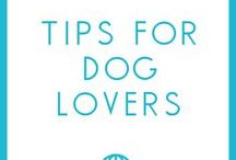 Tips for Dog Lovers / Tips for dog lovers on adopting, training, and all aspects of life with your dog!
