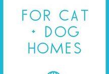 For Cat & Dog Households / Tips for cat + dog households!