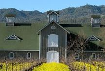 Winery Moments / Pictures of Corison Winery plus fun pins from our fans