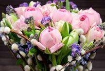 nlc.hu > Flowers / Aki a virágot szereti, rossz ember nem lehet.