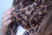 cheetah.cheetah.cheetah. :) / by Robyn Hawkins