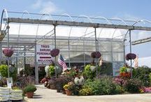 America's Best Flowers / Over 10,000 Hanging Baskets, 21 Greenhouses, Thousands of Annuals & Perennials. Locally owned & operated in Cottage Grove, WI