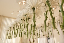 Decor + Floral Design