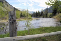 """Montana - a Love Affair / I will always come home to Montana. """"I am In love with Montana..."""" / by Molly Harris"""