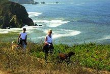 Favorite Hikes