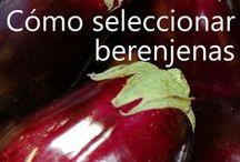 En español: Ideas de Cocina y Nutrición / Ideas para Cocinar y Nutrición (ICAN) es una serie de clases de nutrición gratis, divertidas y llenas de actividades. ICAN obtiene fondos a través de EFNEP y SNAP-Ed (por sus siglas en inglés). Y se enfoca en comunidades de Nuevo Mexico. En este sitio encontrará ideas fáciles de cocinar para su familia, como ahorrar dinero y realizar actividad fisica. Para inscribirse en clases gratuitas en el estado de Nuevo Mexico, por favor llame al 1(877)993-3637 / by NMSU Ideas for Cooking and Nutrition