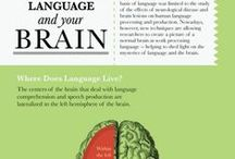 Language - broad concepts / frameworks/language levels, key concepts, items of interest to English Language students
