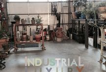 showroom. / Showroom and retail concepts for Rust Garden Supply