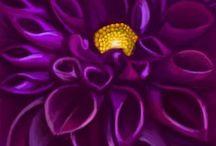 Color me purple / Color colors purple inspiration photos