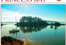 Bruce Cullen - Princess Bay