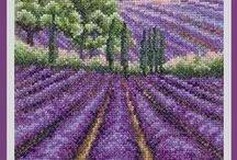 XS - Lavender