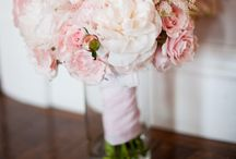 Schuck Wedding / by Ashley Wunning