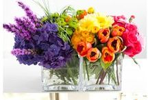 Rainbow wedding and party / A Rainbow of colours for your wedding? an explosion of joy for your party