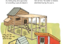 CHICKEN COOP / coops, fences, feeders, drinkers...ideas to steal 8)