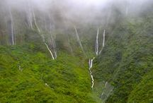 West Maui and Molokai Helicopter Tours / We offer 45 minute and 60 minute tours of the West Maui Mountains and Molokai. Take a tour of the lush valleys of West Maui and be amazed by the tallest sea cliffs in the world on Molokai. Molokai also has some of the tallest waterfalls in the state of Hawaii. #AirMaui #Maui #MauiTours