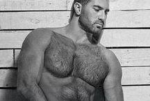 MEN | BEARS