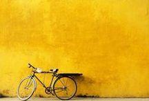 La vie en jaune / Life in yellow