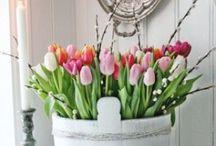 Lente / Voorjaar.