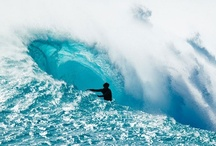 The Blue Room / \m/  Wherein I dream of being a surfer  \m/ / by Jen