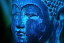 Buddha / by Sandra Raichel