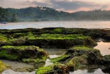 Indonesia / Photo gallery of Indonesian beautiful nature and culture...