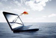 Internet Marketing Tools / Internet Marketing Tools