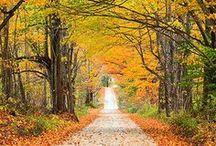 # Seasons - Autumn # / by GR2Conserve