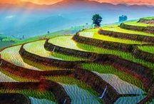 Thailand Reise / Berichte, Ideen und Inspirationen für die Thailand-Reise