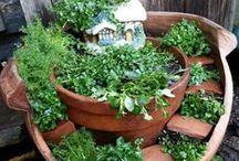 mini-tuintjes Broken-Pot Fairy-Garden