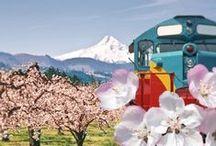 Mt Hood Railroad / Part of the Premier Rail Collection, the Mt Hood Railroad is located in Hood River, Oregon.