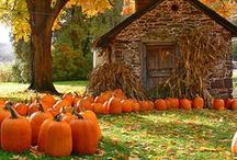 Fall Inspiration / Great ideas for Fall!