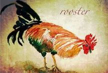 Rooster Express / by Carrie Ward