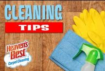 Cleaning and Organizational Tips / Not every stain can be removed, but if we are able to remove a spot, we guarantee it will not return. Our cleaning process is designed to give you the longest lasting results possible. If a spot does resurface, it will usually do so within a few days of the cleaning BUT we will give you a full 30 Day Guarantee. If any of the same spots reoccur during the first 30 days after the cleaning, call us and we will return to clean them again for FREE.